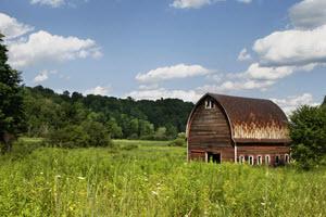 Farm History Videos – Farmer Browne