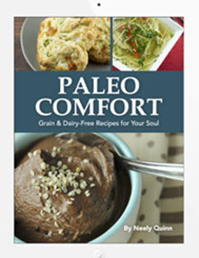 paleo-comfort-cover-in-ipad_220